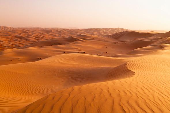Sand Dune Landscape; Liwa Oasis, Abu Dhabi, United Arab Emirates