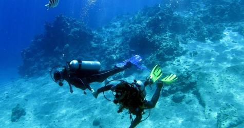 A couple dives inside the sea near coral reefs at the Red Sea resort of Sharm el-Sheikh