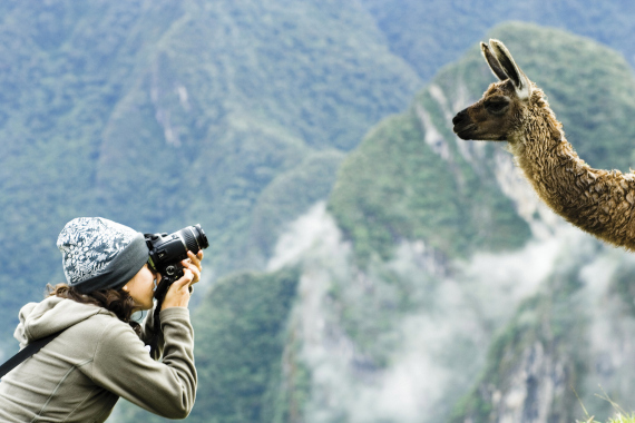 Woman taking a picture of a llama, Machu Picchu, Peru