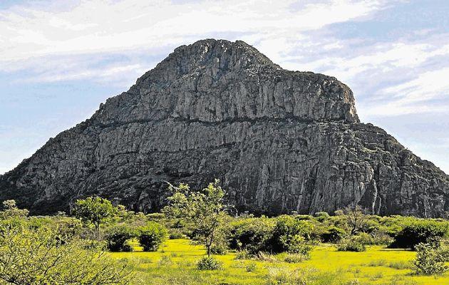 تقرير سياحى لبوتسوانا افريقيا